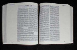 Bible Double Column